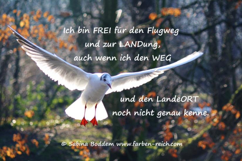 Mutmachaffirmation für einen Neubeginn: Ich bin FREI...