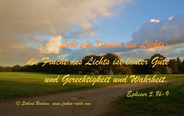 Ganzheitliche Farbberatung, Sabina Boddem, www.farben-reich.com