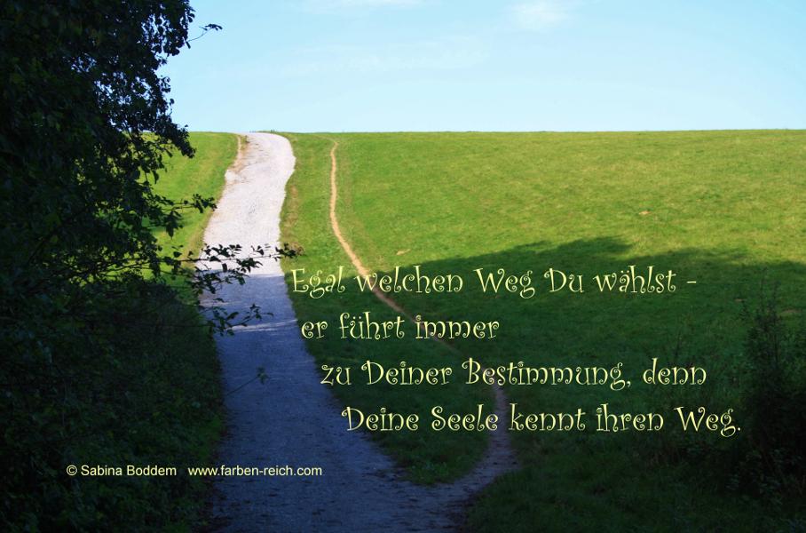Egal welchen Weg Du wählst –