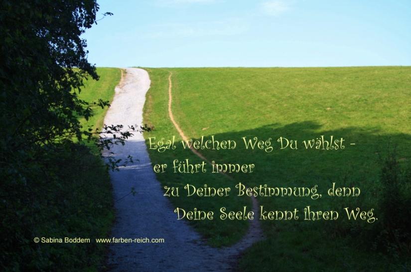 Poesie von Sabina Boddem