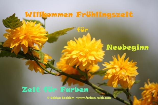 www.farben-reich.com