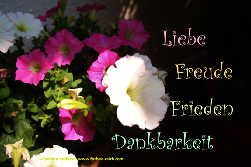 Liebe, Freude, Frieden Dankbarkeit