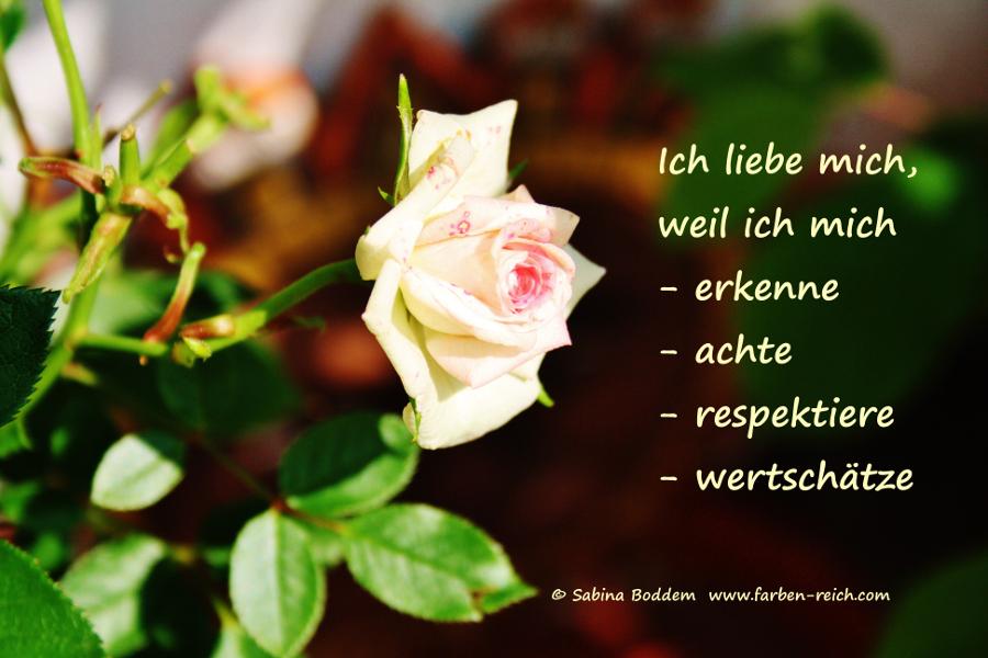 Liebe Mich! (2014)