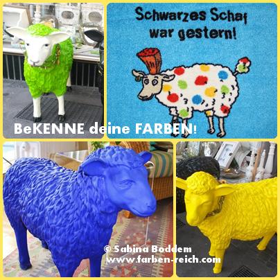 Schwarzes Schaf war gestern - Farbenreich - Sabina Boddem - www.farben-reich.com