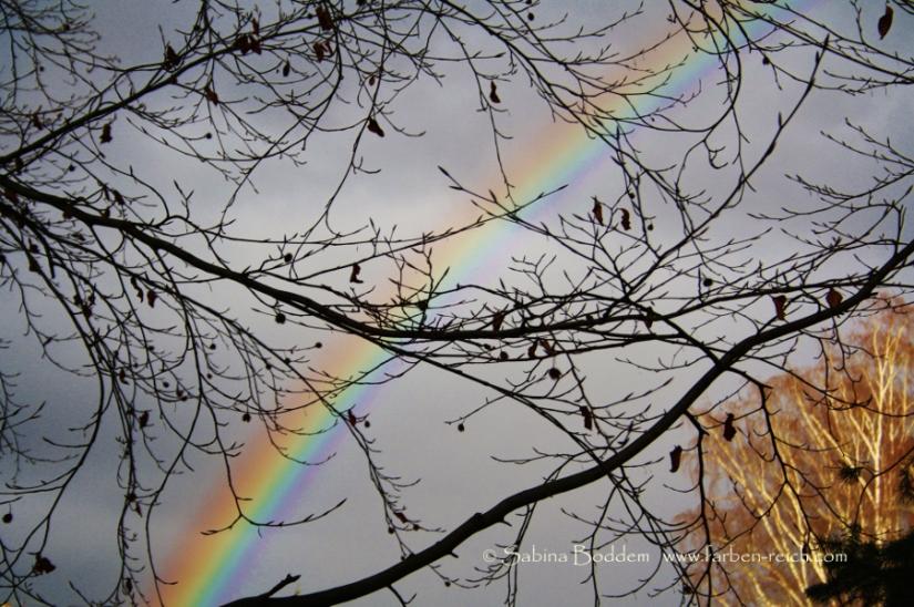 Regenbogen, Farbenreich, Ganzheitliche Farbberatung