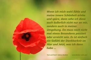 Farb- und Stilberatung - Farbenreich - Sabina Boddem