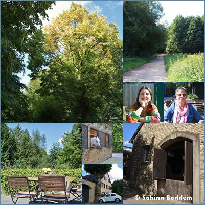 #Farben der #Natur im #September