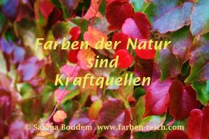 Herbst, Herbstfarben, Herbstrot, Farben der Natur