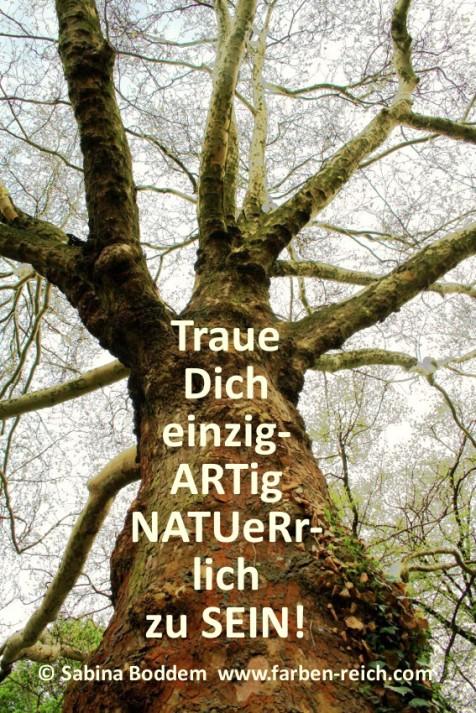 Du bist #Natur und #einzigartig #wundervoll #vollkommen #natürlich