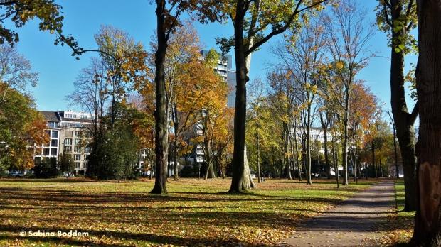 #Hofgarten #Düsseldorf