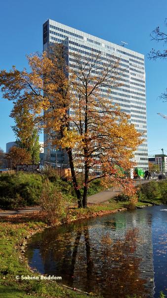 #Dreischeibenhaus #WeiherAnDerLandskrone #Hofgarten #Düsseldorf