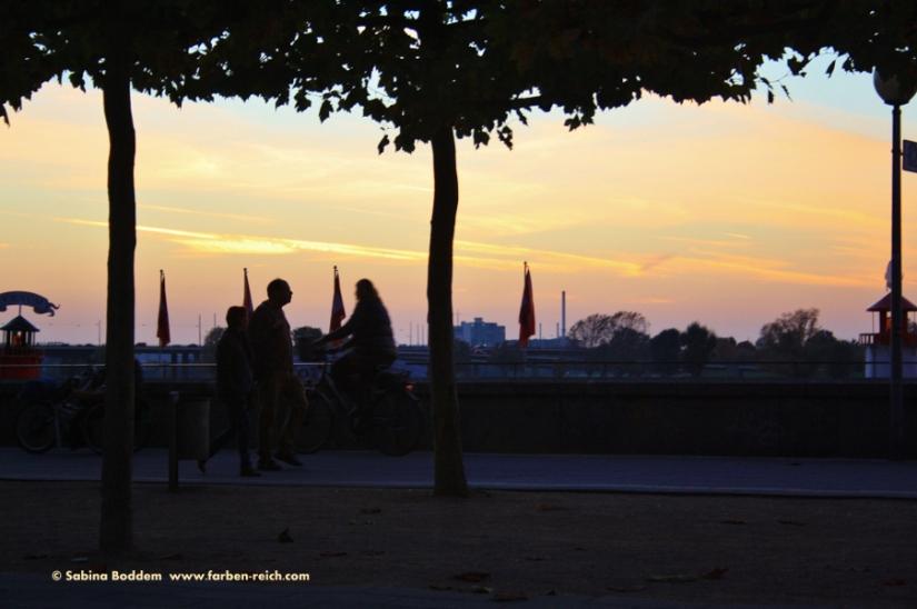 #Reinuferpromenade #Düsseldorf #Altstadt