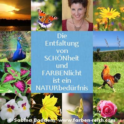 Schönheit, Harmonie und Natur - Farbenreich, Sabina Boddem, Düsseldorf