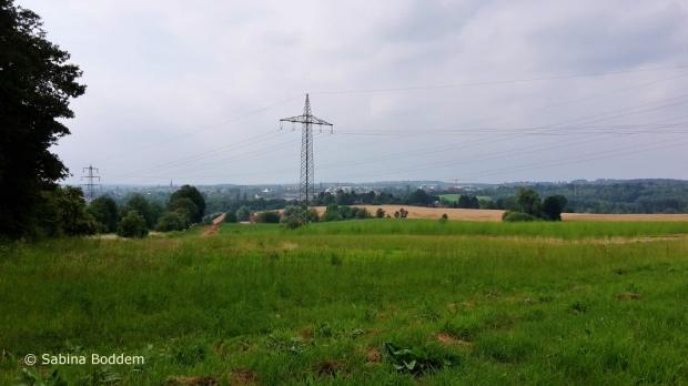 Düsseldorf' s Umgebung zwischen Knittkuhl und dem Schwarzbachtal (23)