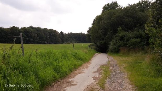 Düsseldorf' s Umgebung zwischen Knittkuhl und dem Schwarzbachtal (6)