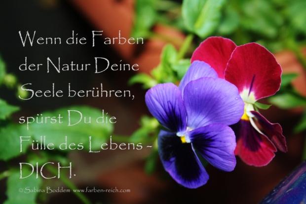 Wenn die Farben der Natur Deine Seele berühren, spürst Du die Fülle des Lebens - DICH. - Kopie