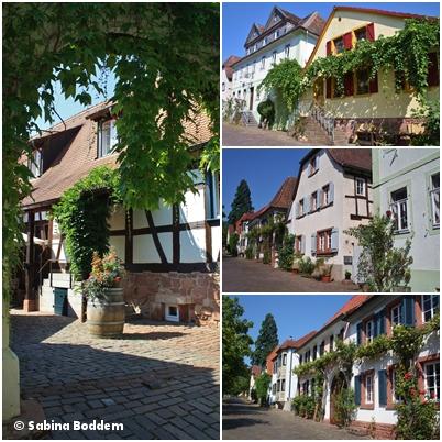 Rhodt unter Rietburg. (2)