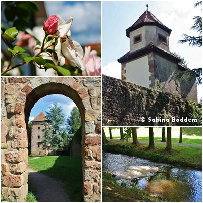 Weißenburg im Elsass (5)