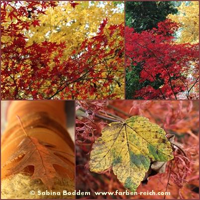herbstfarben-der-natur-12