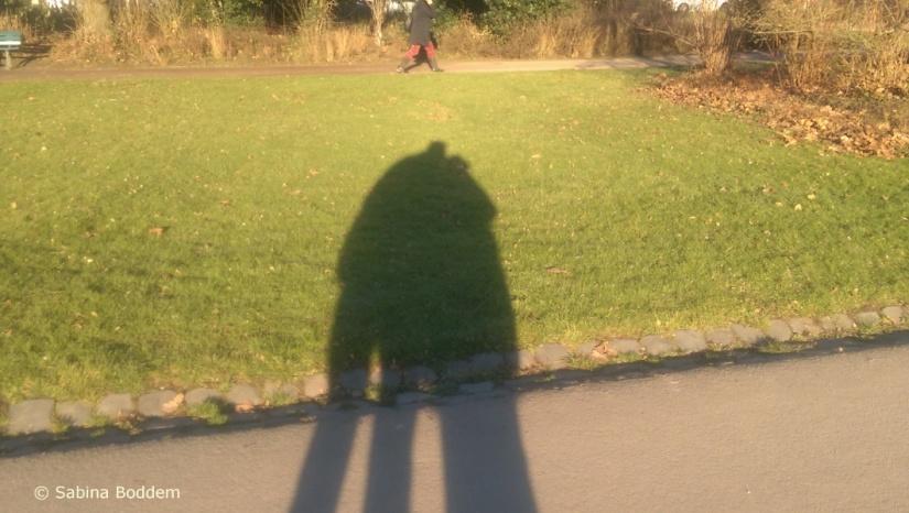 im Hofgarten